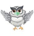 owl cartoon character wearing mask vector image vector image