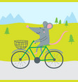 rat riding bicycle vector image vector image