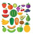 set fruits flat icon vector image