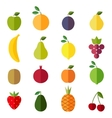 Set of flat design icons for fruits vector image vector image