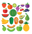 set of fruits flat icon vector image