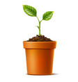 3d green seedling grows in soil ceramic pot vector image