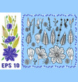 floral elements set with violet daisy-like flowers vector image