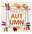 hello autumn background with arrows vector image vector image
