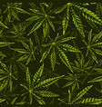 seamless cannabis pattern vector image