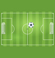 soccer or football game field vector image