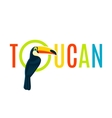 Toucan Flat Decorative Nameplate Design Banner vector image