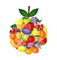 Apple shape made from fruits for your design vector image