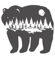 bear forest vector image vector image