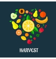 Fruits harvest flat design vector image