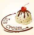 Ice cream ball Vanilla Chocolate chip vector image vector image