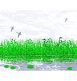 marshland vector image