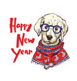 christmas greeting card with happy winter pug dog vector image