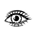 hand-drawn beautiful female eye vector image