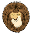 Lion king of beasts vector image vector image