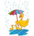 lovely mother duck vector image vector image