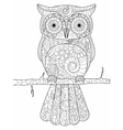 Owl on a branch Coloring book for adults vector image vector image