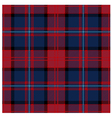 Traditional Tartan Plaid Pattern Design vector image vector image
