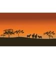zebra family of silhouette in hills vector image vector image