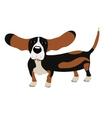 Dog Basset Hound vector image