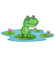 A pond with a frog vector image vector image