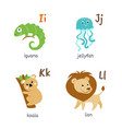 animal alphabet with iguana jellyfish koala lion vector image