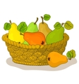 Basket with fruits pears