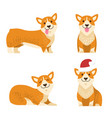 dogs collection of icons vector image vector image