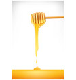 honey dripping from a wooden dipper vector image vector image