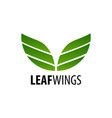 leaf wings logo concept design symbol graphic vector image vector image