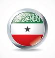 Somaliland flag button vector image vector image