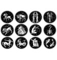zodiac icons astrology horoscope with signs vector image vector image