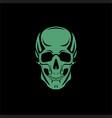 scull black backdround vector image