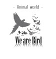 animal world we are bird gray birds background vec vector image vector image