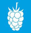 blackberry fruit icon white vector image vector image