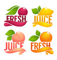 cherry lemon orange peach collection of dresh vector image vector image