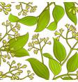 cinnamon pattern vector image vector image