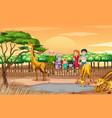 scene with people looking at giraffes at zoo vector image vector image