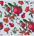 seamless pattern with hand drawn pomegranates vector image vector image