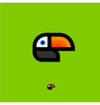 toucan tropical bird logo vector image