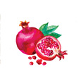 Artistic fruit design vector image vector image