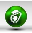 Avocado and Healthy Fruit design