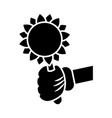 hand glove with sunflower cartoon vector image