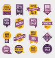 labels and tags with advertizing info for vector image vector image