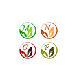 leaf health nutrition initial m n o p vector image vector image