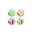 leaf health nutrition initial m n o p vector image