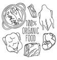 meat food carnivore diet organic vector image vector image
