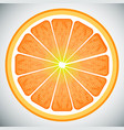 piece of orange high quality vector image vector image