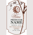 wine label with grapevine sun and moon vector image
