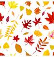 autumn foliage falling leaves fall season vector image
